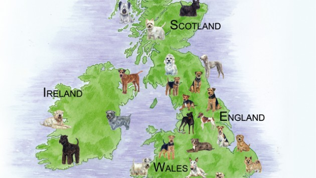 Terriers-Map-large-630x355.jpg